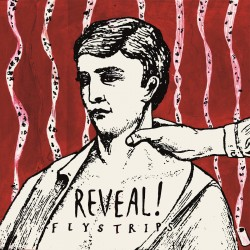 REVEAL - Flystrips
