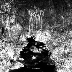 BOSQUE - Cleansing
