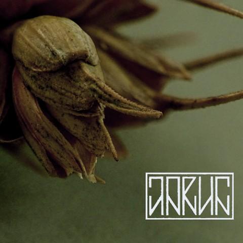 JARUN - Sporysz